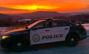 blooming grove police car